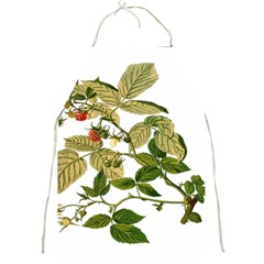 Berries Berry Food Fruit Herbal Full Print Aprons by Nexatart