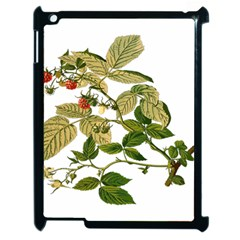 Berries Berry Food Fruit Herbal Apple Ipad 2 Case (black)