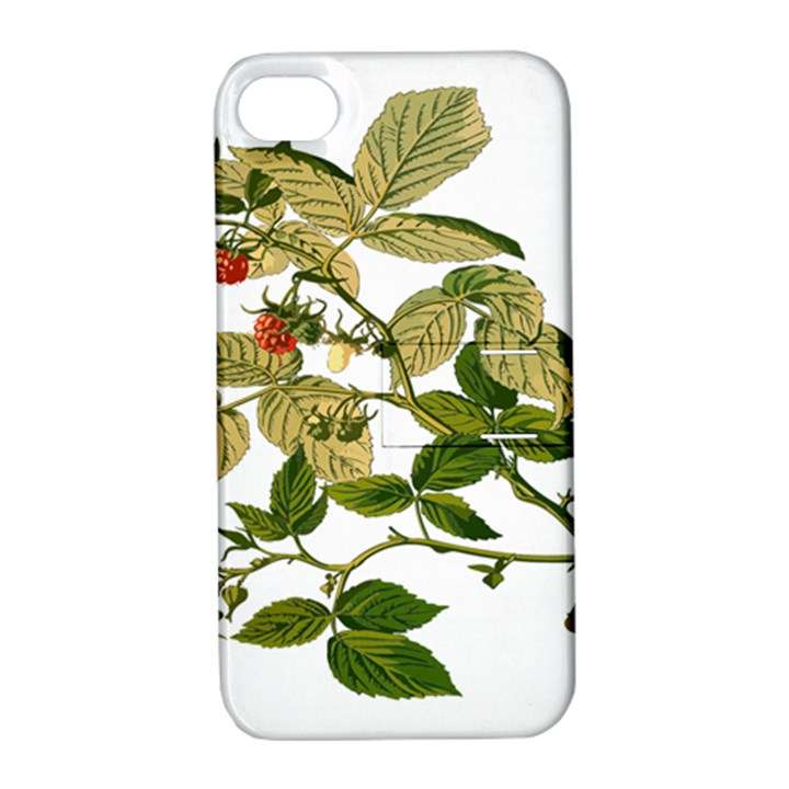 Berries Berry Food Fruit Herbal Apple iPhone 4/4S Hardshell Case with Stand