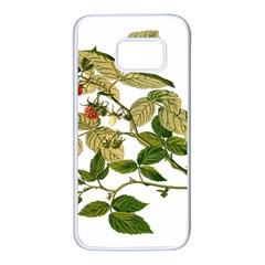 Berries Berry Food Fruit Herbal Samsung Galaxy S7 White Seamless Case
