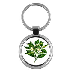 Bitter Branch Citrus Edible Floral Key Chains (round)  by Nexatart