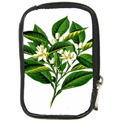 Bitter Branch Citrus Edible Floral Compact Camera Cases by Nexatart
