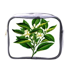 Bitter Branch Citrus Edible Floral Mini Toiletries Bags by Nexatart