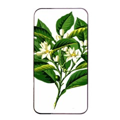 Bitter Branch Citrus Edible Floral Apple Iphone 4/4s Seamless Case (black) by Nexatart