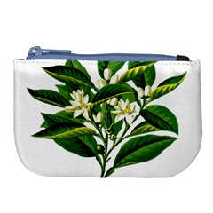 Bitter Branch Citrus Edible Floral Large Coin Purse by Nexatart