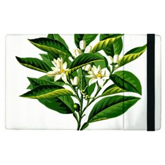 Bitter Branch Citrus Edible Floral Apple Ipad Pro 9 7   Flip Case by Nexatart