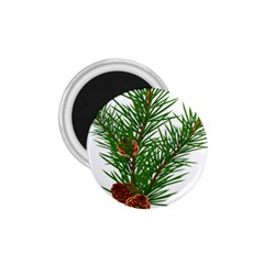 Branch Floral Green Nature Pine 1 75  Magnets by Nexatart