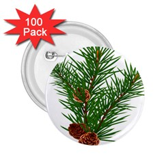 Branch Floral Green Nature Pine 2 25  Buttons (100 Pack)  by Nexatart