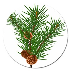 Branch Floral Green Nature Pine Magnet 5  (round) by Nexatart