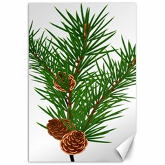 Branch Floral Green Nature Pine Canvas 20  X 30   by Nexatart