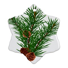 Branch Floral Green Nature Pine Ornament (snowflake)
