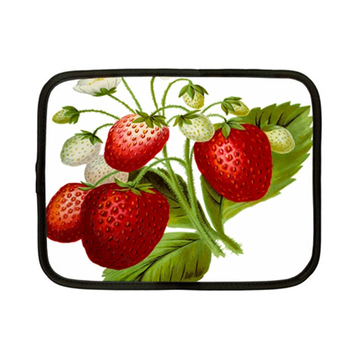 Food Fruit Leaf Leafy Leaves Netbook Case (Small)