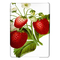 Food Fruit Leaf Leafy Leaves Ipad Air Hardshell Cases by Nexatart