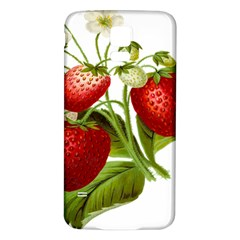 Food Fruit Leaf Leafy Leaves Samsung Galaxy S5 Back Case (white) by Nexatart