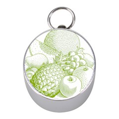 Fruits Vintage Food Healthy Retro Mini Silver Compasses by Nexatart