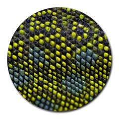 Lizard Animal Skin Round Mousepads by BangZart
