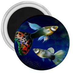 Marine Fishes 3  Magnets by BangZart