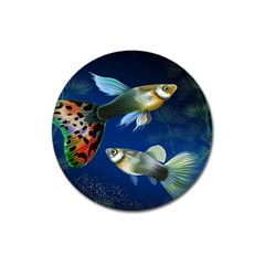Marine Fishes Magnet 3  (round) by BangZart