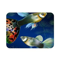 Marine Fishes Double Sided Flano Blanket (mini)