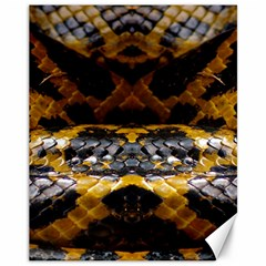 Textures Snake Skin Patterns Canvas 11  X 14   by BangZart