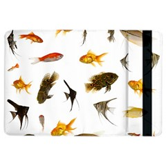 Goldfish Ipad Air 2 Flip