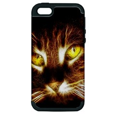 Cat Face Apple Iphone 5 Hardshell Case (pc+silicone) by BangZart