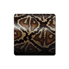 Snake Skin Olay Square Magnet by BangZart