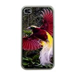 Cendrawasih Beautiful Bird Of Paradise Apple iPhone 4 Case (Clear) Front
