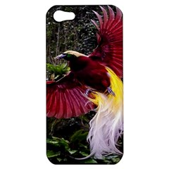 Cendrawasih Beautiful Bird Of Paradise Apple Iphone 5 Hardshell Case