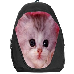 Cat  Animal  Kitten  Pet Backpack Bag