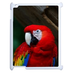 Scarlet Macaw Bird Apple Ipad 2 Case (white) by BangZart