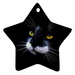 Face Black Cat Ornament (star)