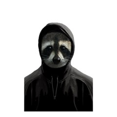 Gangsta Raccoon  Shower Curtain 48  X 72  (small)