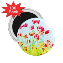 Poppy Field 2 25  Magnets (100 Pack)