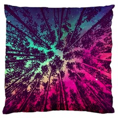 Just A Stargazer Large Flano Cushion Case (two Sides) by augustinet