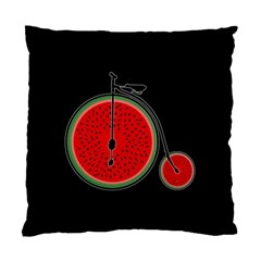 Watermelon Bicycle  Standard Cushion Case (one Side) by Valentinaart