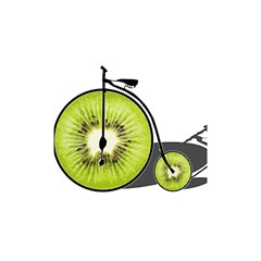 Kiwi Bicycle  Shower Curtain 48  X 72  (small)  by Valentinaart