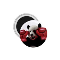 Boxing Panda  1 75  Magnets by Valentinaart