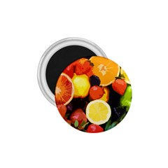 Fruits Pattern 1 75  Magnets