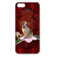 Sweet Little Chihuahua Apple Seamless Iphone 5 Case (clear) by FantasyWorld7