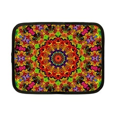 Fractal Mandala Abstract Pattern Netbook Case (small)