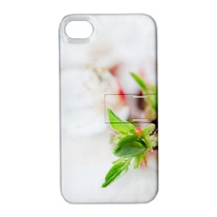 Fragility Flower Petals Tenderness Leaves  Apple Iphone 4/4s Hardshell Case With Stand by amphoto