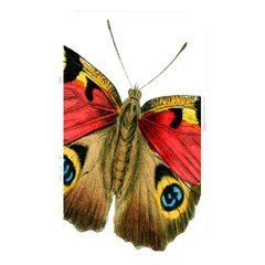 Butterfly Bright Vintage Drawing Memory Card Reader by Nexatart