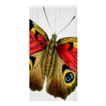 Butterfly Bright Vintage Drawing Shower Curtain 36  x 72  (Stall)  33.26 x66.24 Curtain