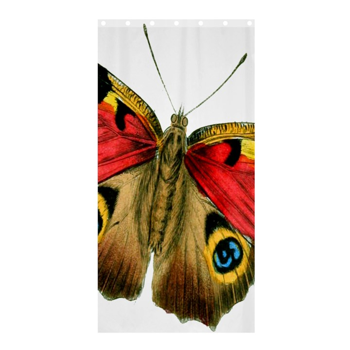 Butterfly Bright Vintage Drawing Shower Curtain 36  x 72  (Stall)
