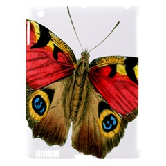 Butterfly Bright Vintage Drawing Apple Ipad 3/4 Hardshell Case (compatible With Smart Cover) by Nexatart