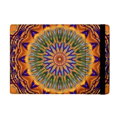 Powerful Mandala Apple Ipad Mini Flip Case by designworld65