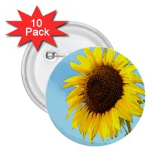 Sunflower 2 25  Buttons (10 Pack)  by Valentinaart