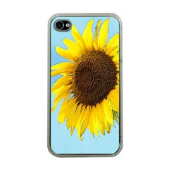 Sunflower Apple Iphone 4 Case (clear)