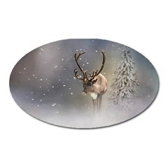 Santa Claus Reindeer In The Snow Magnet (oval) by gatterwe